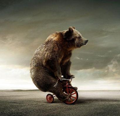 медвед на велосипеде (автора не знаю, картинка гениальная)