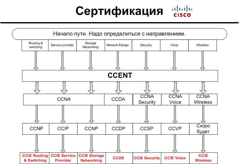 Cisco серификация схема