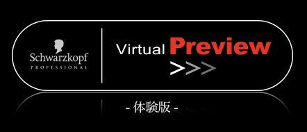 virtual preview