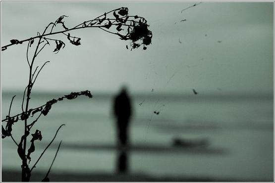 ветер гонит листья небо слезы льет сам себя ловлю на мысли что никто мен