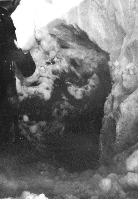 группа дятлова фото из морга