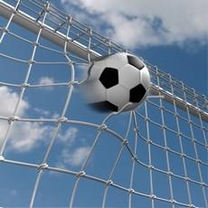 nogometna lopta u golu